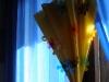 с цветя в дъжда-02