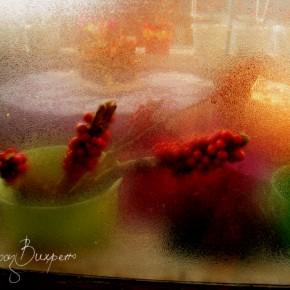 През стъклото