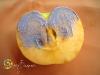 ябълково настроение-07
